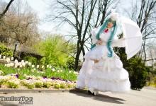 White Bunny Miku